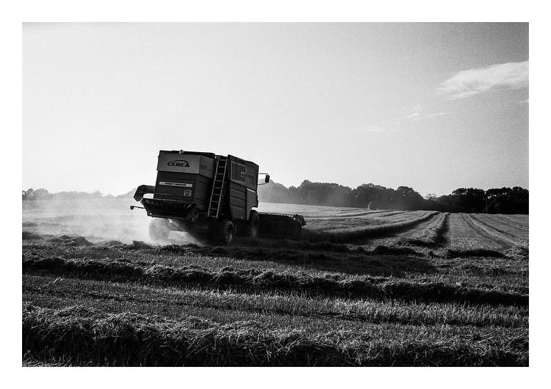 FILM - Harvest