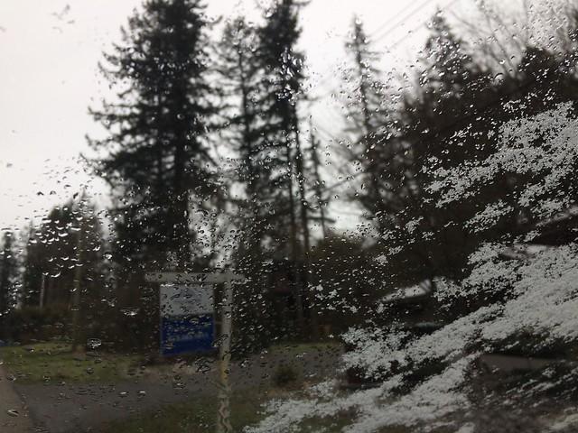 shooting through snow drifts...