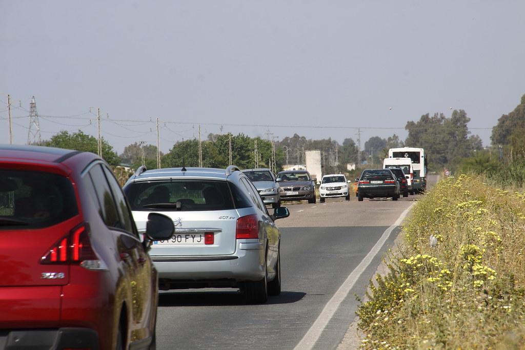Carretera de Utrera-Los Palacios