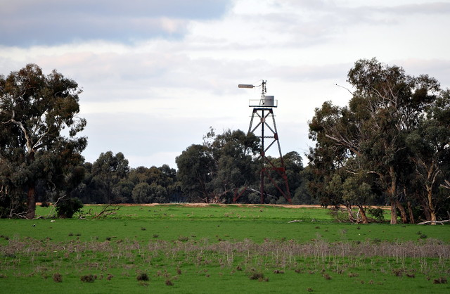 14-foot Alston Enclosed Double Geared windmill on a massive tank stand tower; near Durham Ox, Victoria, Australia