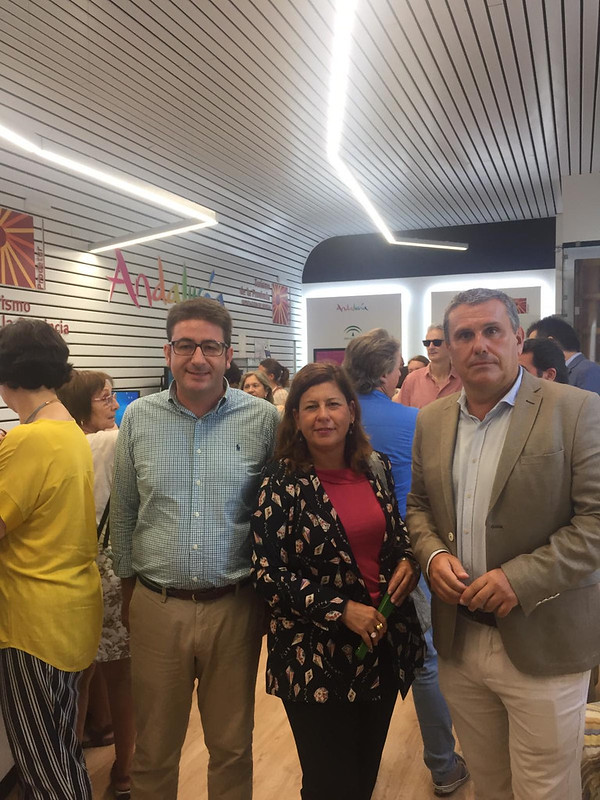 Diputados provinciales Cs Sevilla