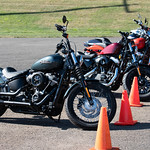Yankee Harley-Davidson 2020 Experience at The Dream Ride Experience 2019