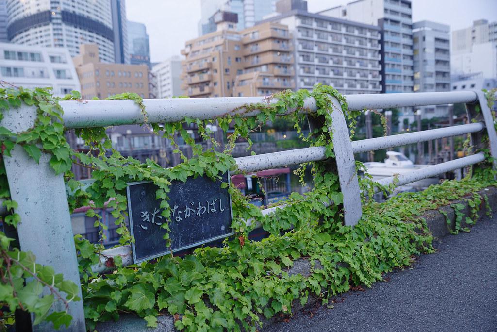 20190824_shinagawa (16)