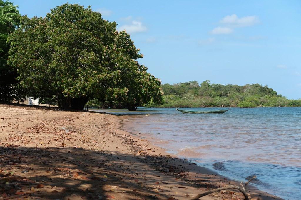 Bei Alter do Chão, Amazonasgebiet. [BRA]