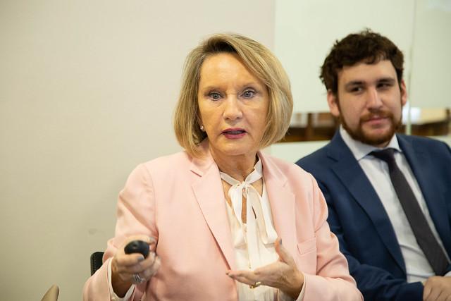 Diplomacia Cultural - Drina Rendic