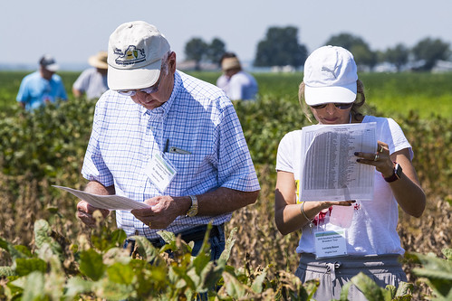Southern Soybean Breeders Tour