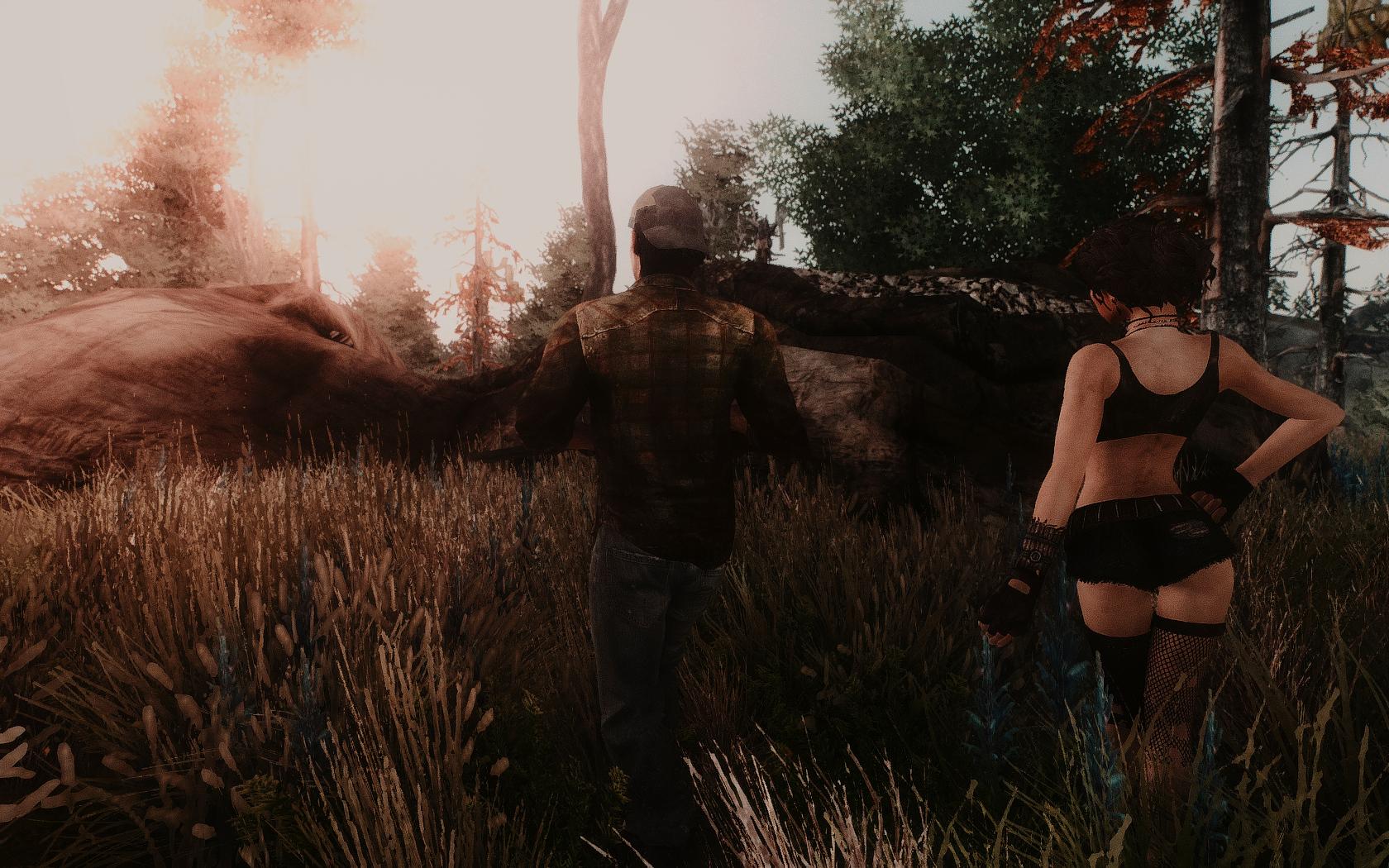Fallout Screenshots XIV 48685564628_5c03893a8d_o