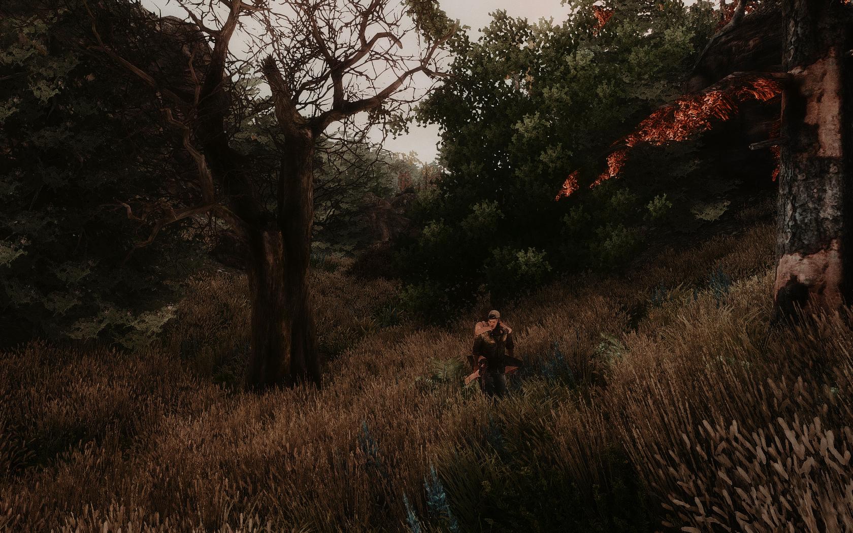 Fallout Screenshots XIV 48685836021_d26e8163eb_o