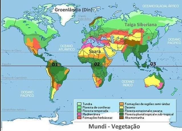 A Destruição das Florestas Equatoriais