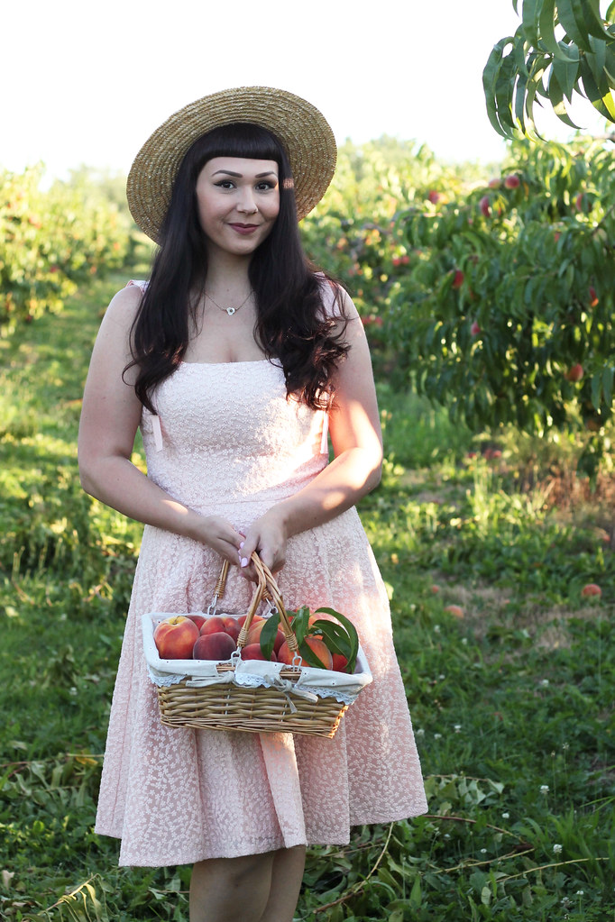 where to pick peaches in rochester ny