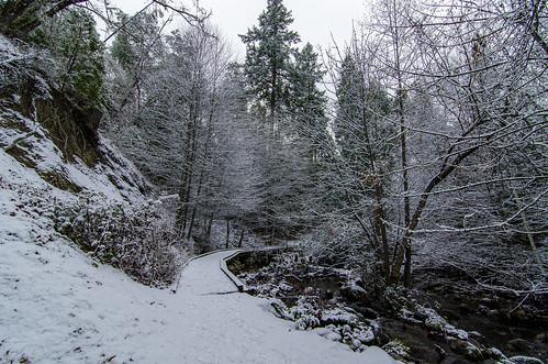 lithia park snow winter path walking landscape ashland oregon al case nikon d7000 tokina 1116mm f28