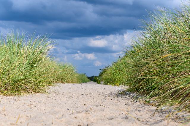 Beach path Heiligendamm - 5369