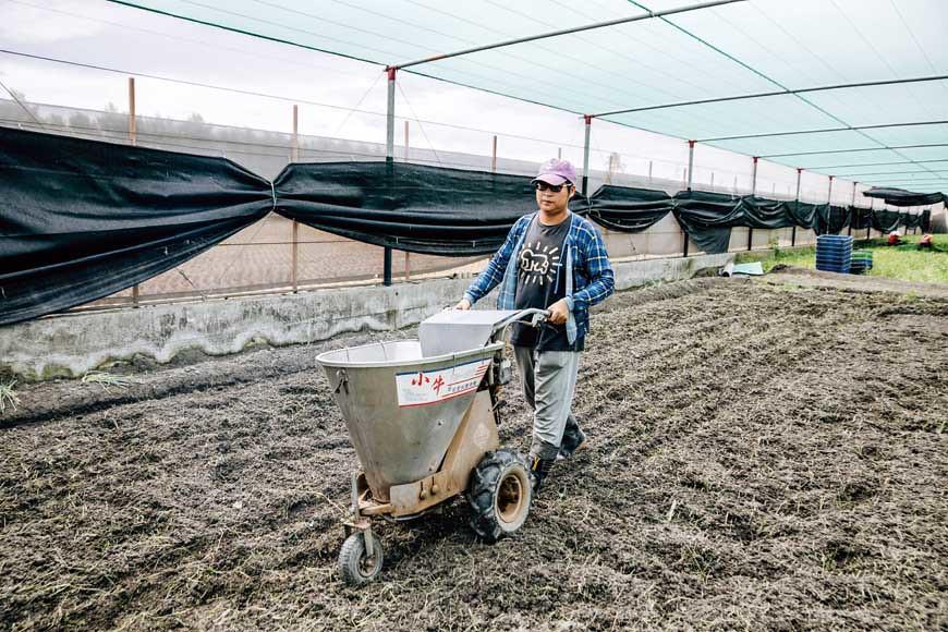 ③使用肥料撒佈機施肥,減省人工作業,適時適地適量施肥,可保持土壤能量滿滿。