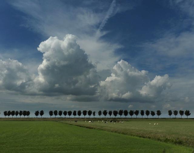 Sky over Beemster