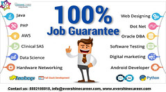 Evershine Career is a 100% placement oriented training program