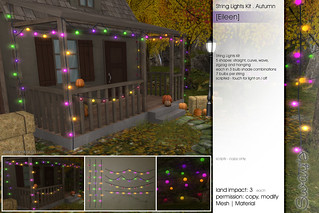 Sway's [Eileen] String Lights Kit . Autumn | FLF