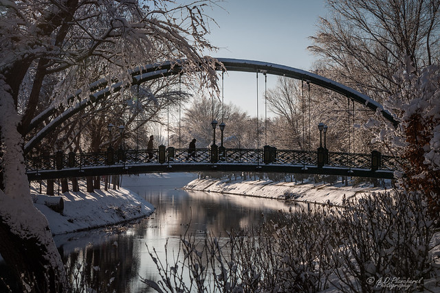 A wintry span