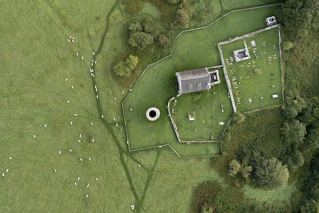 Tending the flock. Lough Derg