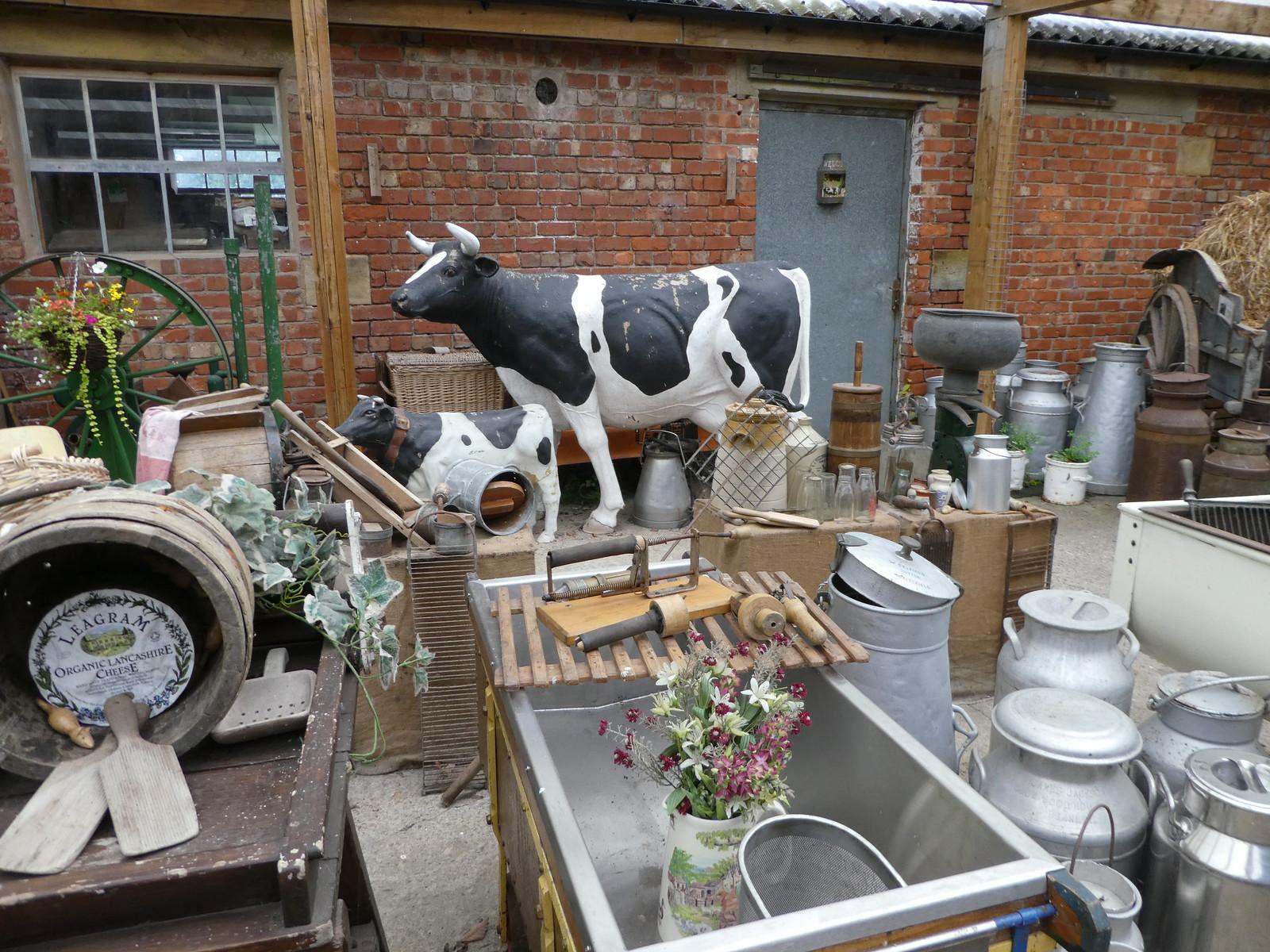 Leagram Organic Dairy, Chipping