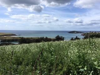 View back to Burgh Island
