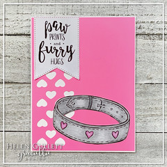 Paw Prints and Furry Hug