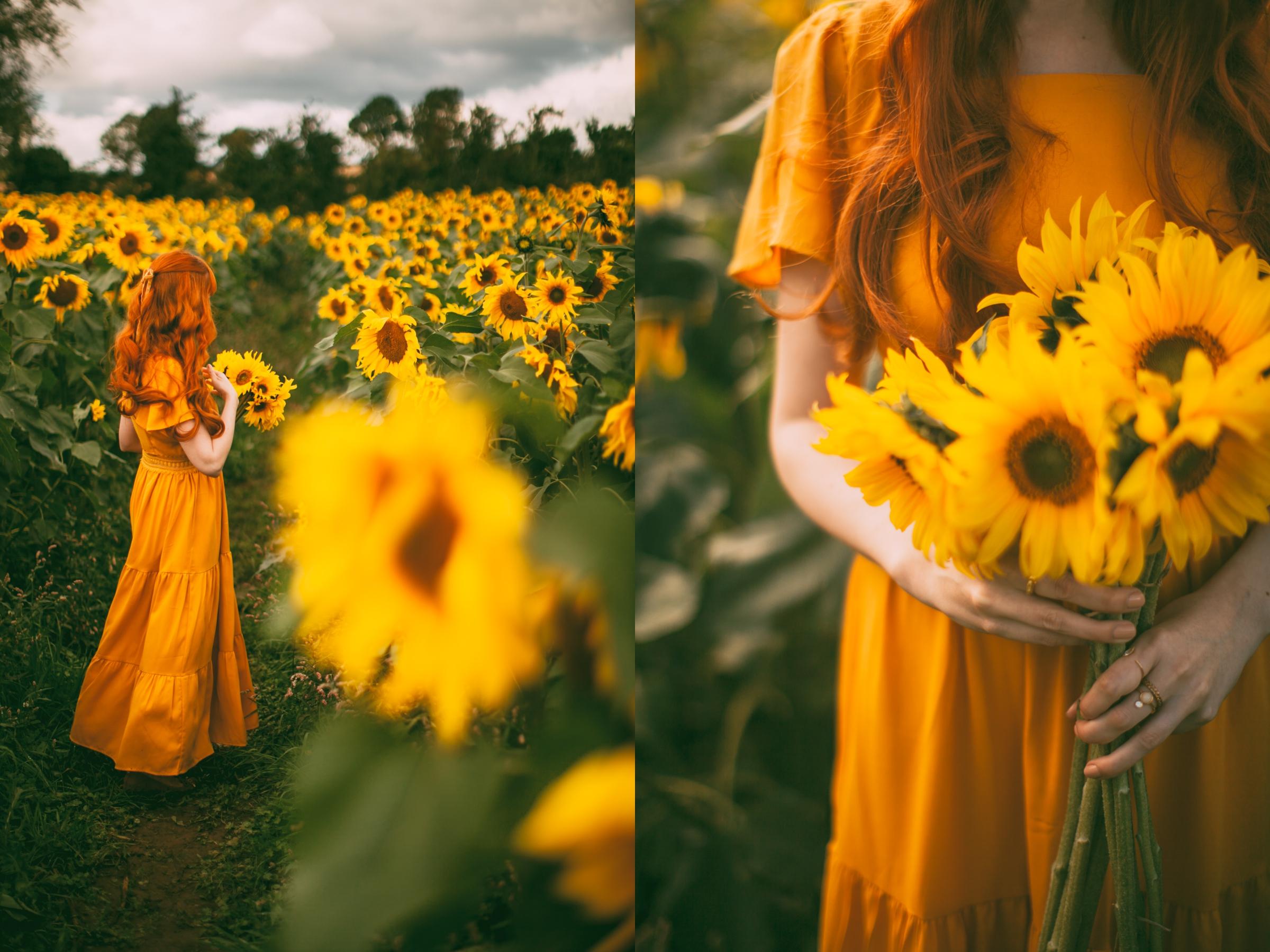 sunflower-2-side
