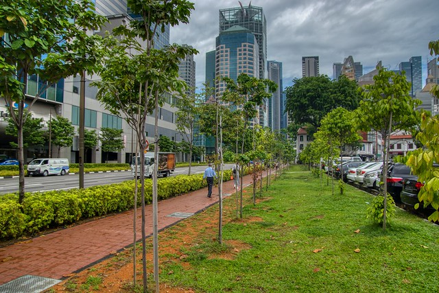 Green space in the city - Singapore, Central Business District