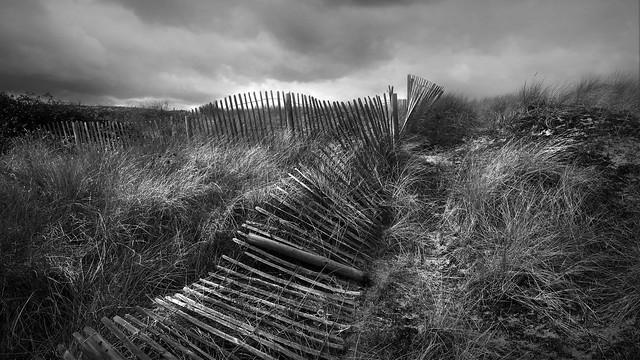 Sand dunes kinmel bay