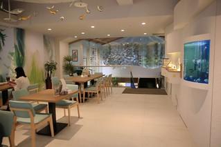 褐藻健康館