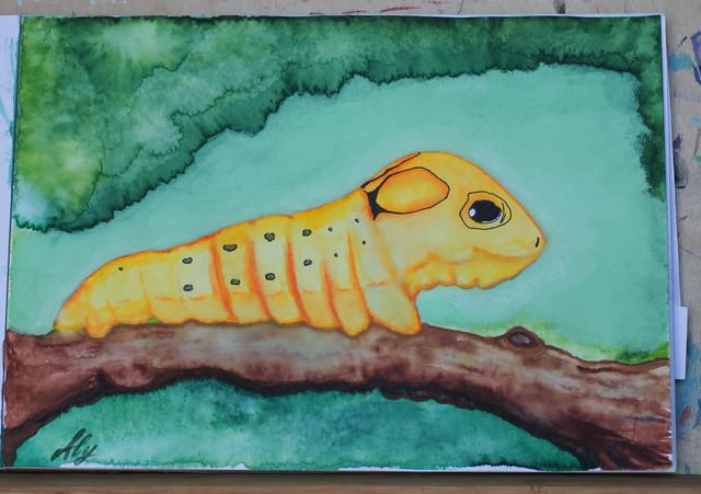 Caterpillar Snake
