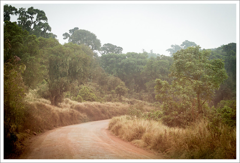 Ngorongoro-4