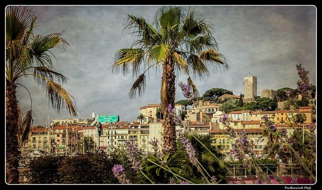 Cannes_Castle_Alpes-Maritimes_Provence-Alpes-Côte d'Azur_France