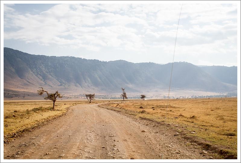 Ngorongoro-128