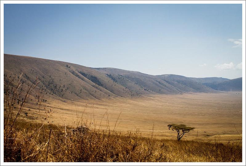 Ngorongoro-48
