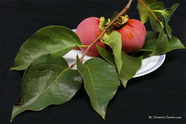 Primi frutti d'autunno (Guardare in large premere L)