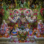 ISKCON Vrindavan Deity Darshan 07 Sep 2019