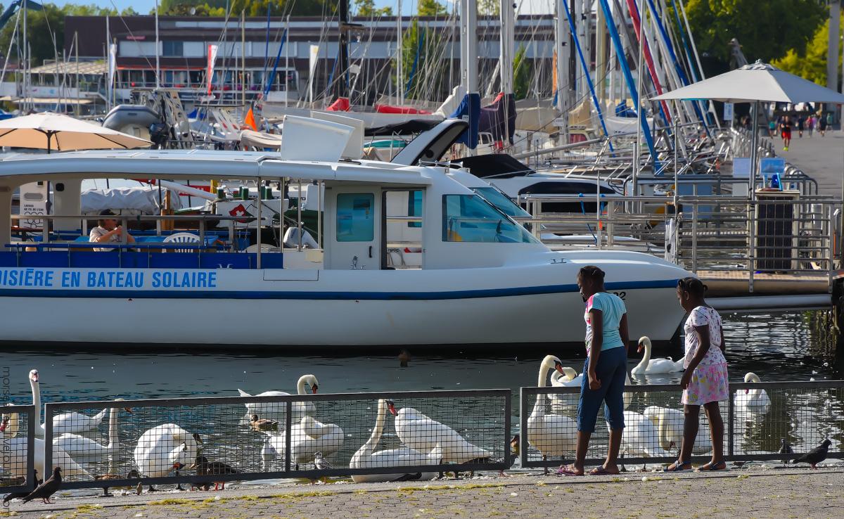 Lousanne-Ufer-(44)