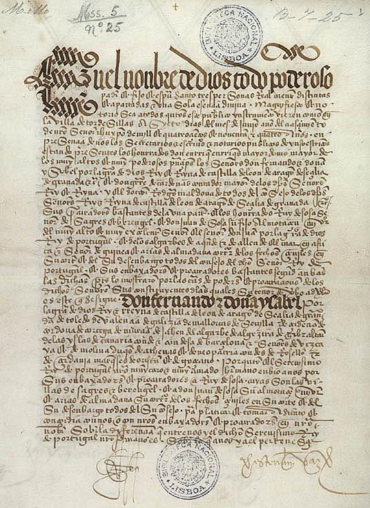 Imagem VII - Um fólio do Tratado de Tordesilhas