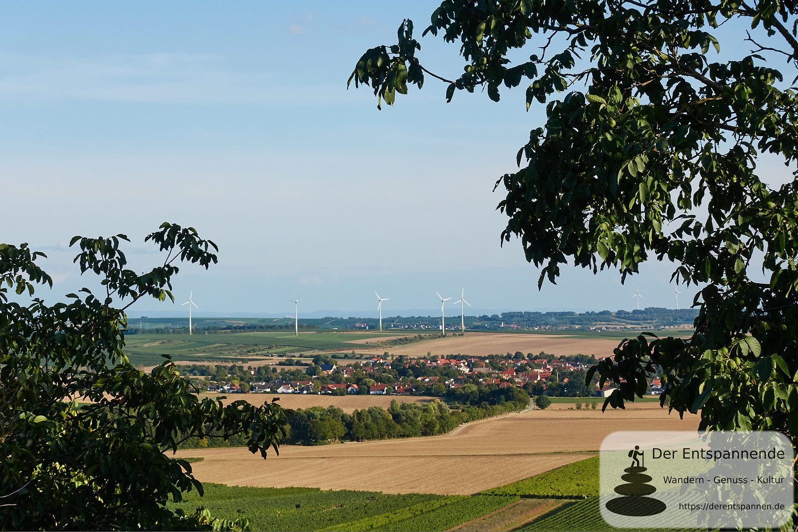 Weinprobe in den Weinbergen zur Selzer Kerb 2019