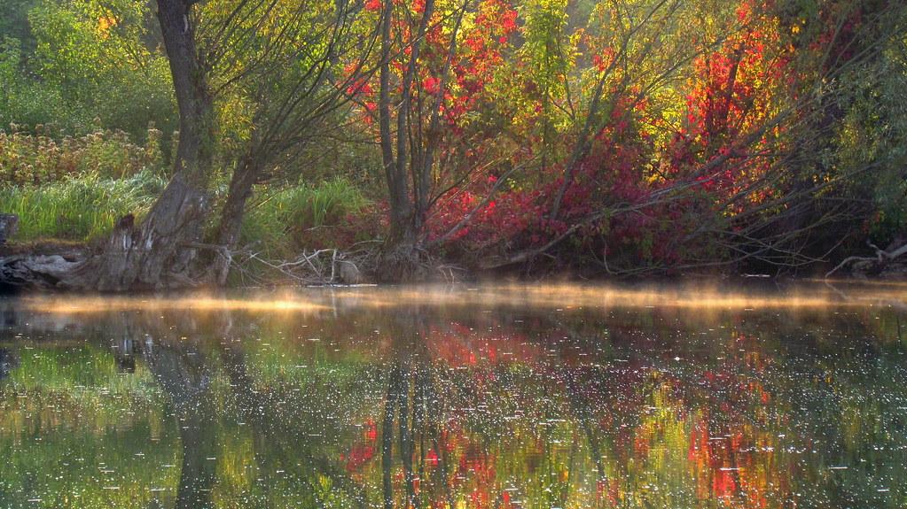 Landscape. Autumn morning at the pond. Kulichka village, Sumy region Ukraine.
