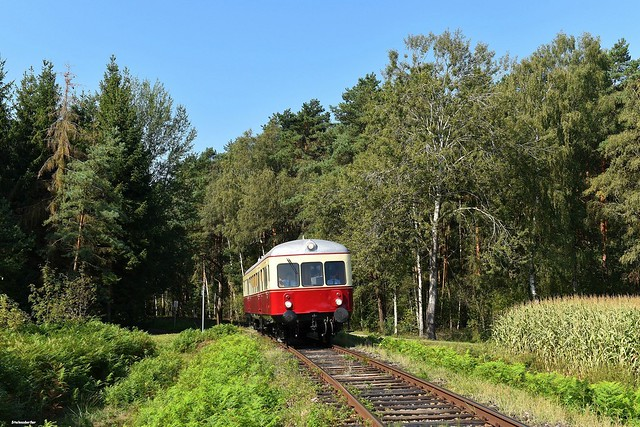Die Waldausfahrt bei Gockenholz