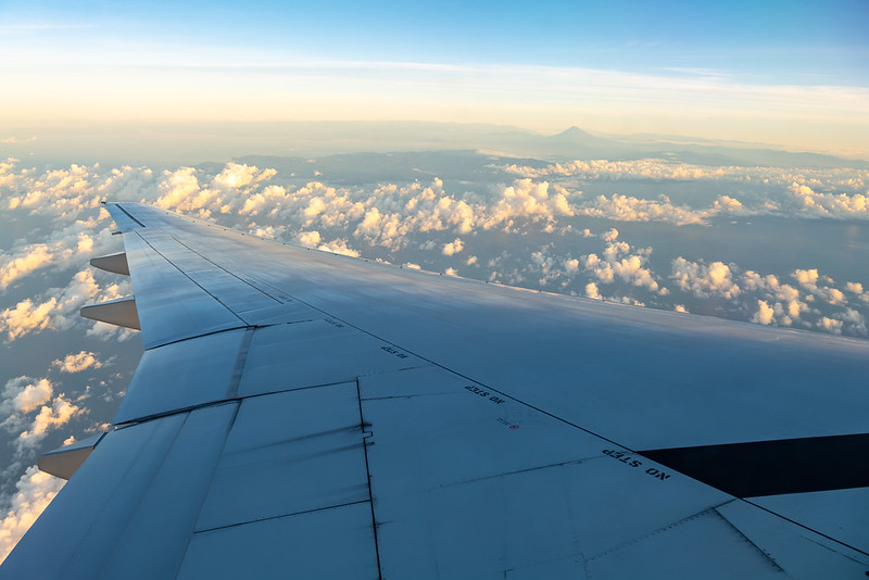 Wing with Mount Fuji