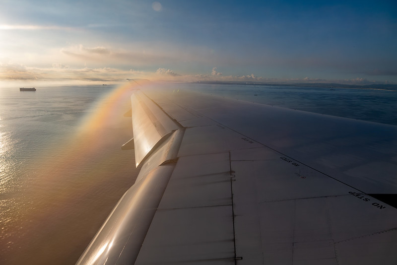 Wing with Rainbow