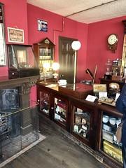 Beamish Museum - leek show