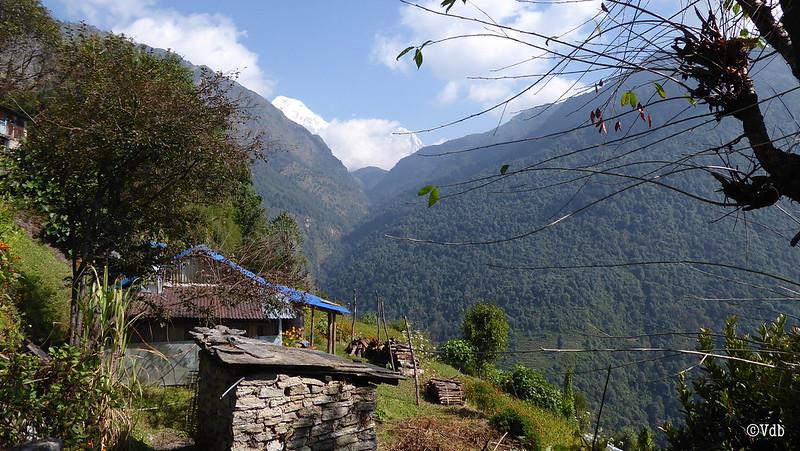 Nepal ABC Trek Uleri