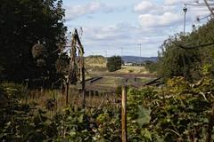 Leith tracks