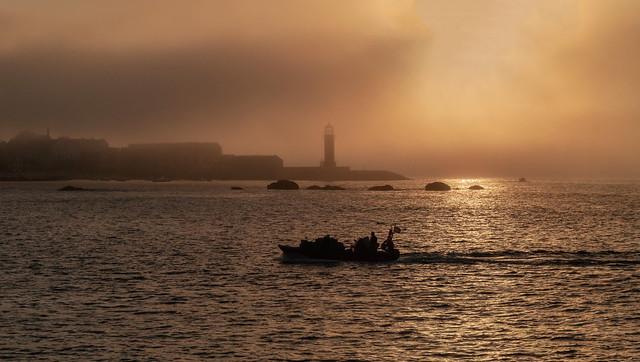 Atardecer con niebla-P9180276
