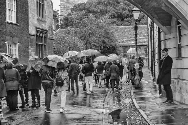 The Forgotten Umbrella