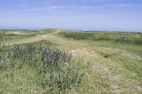 Une journée sur l'île de Batz - Les ruines de la chapelle Sainte-Anne
