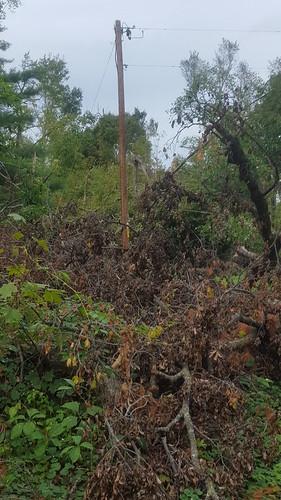 bigroundlakewi stormtornado damage